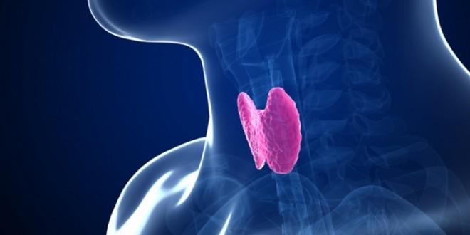 A pajzsmirigy megbetegedés 7 legjellemzőbb tünete