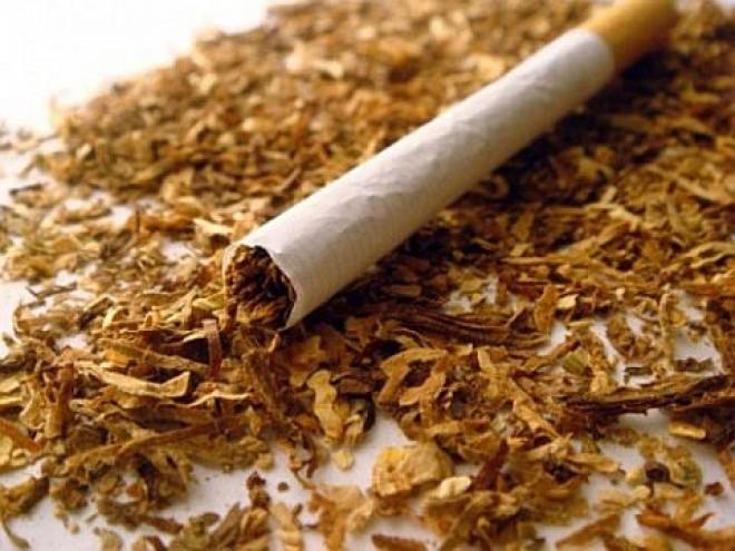 Leleplező videó a cigaretta valódi összetételéről!