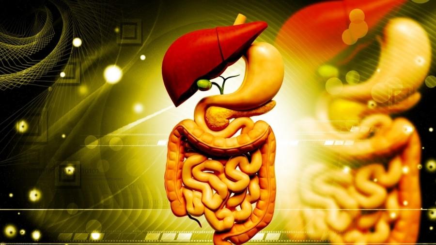 Mi is az a zsírmáj?