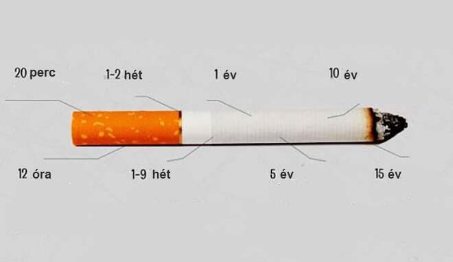 leszokni a dohányzást hízott mit tegyen véleménye