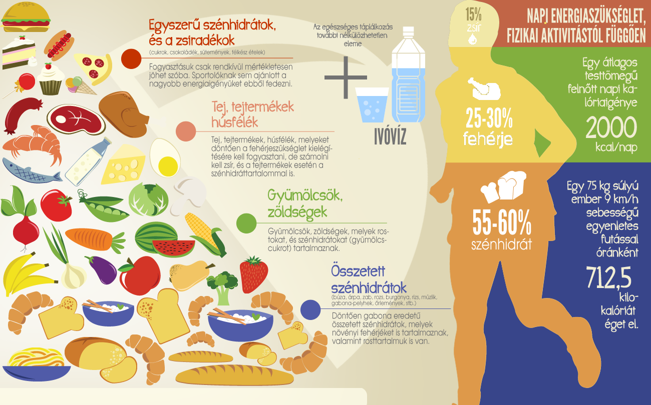 egeszseges étrend