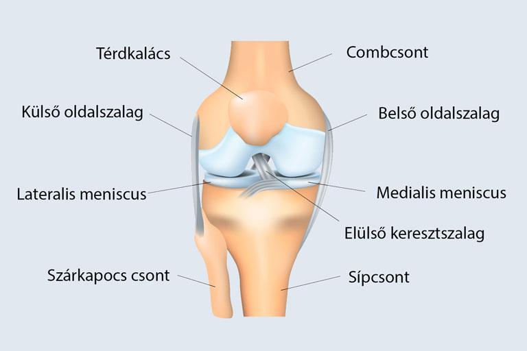 mi történik az ízületi artrózissal)